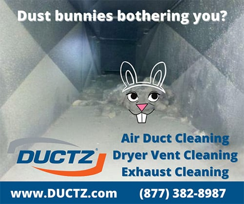 Is Your Home Dustier Than Usual?
