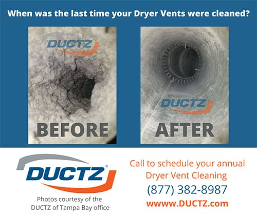 Dust-bunnies-bothering-you-before-and-after-picture-perfect-report